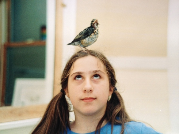 Young me with a robin chick. My career path may not have exactly shocked anyone.