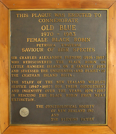 "Plaque to Old Blue, ""Saviour of her species,"" at the Chatham Island airport."