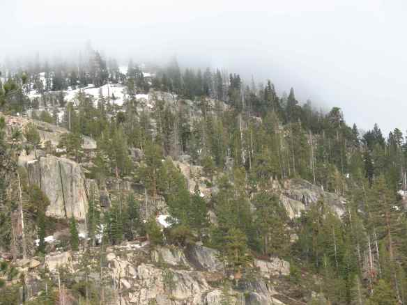 scout_fog_hill