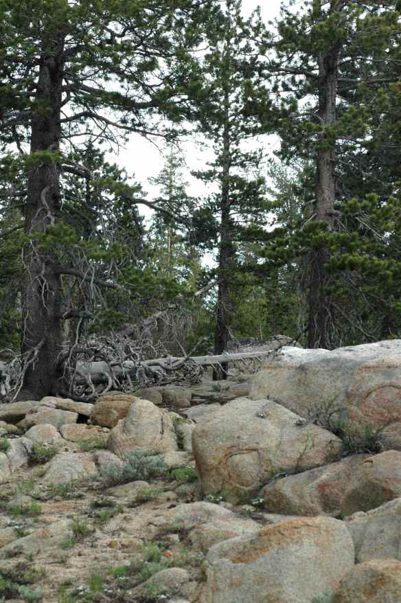 KKRA's mountaintop territory