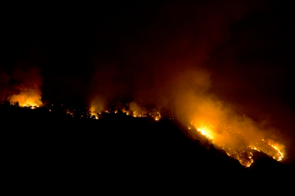 Rim Fire. Photo by Steve Ryan