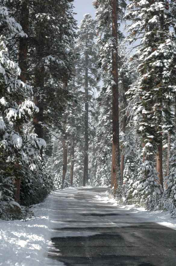 2013_winter_road