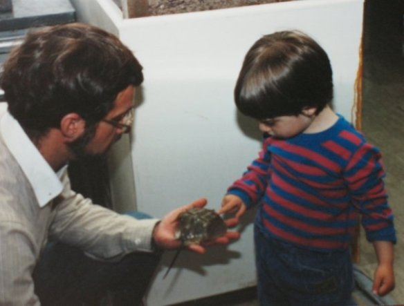 Dad introducing three-year-old me to a horseshoe crab.