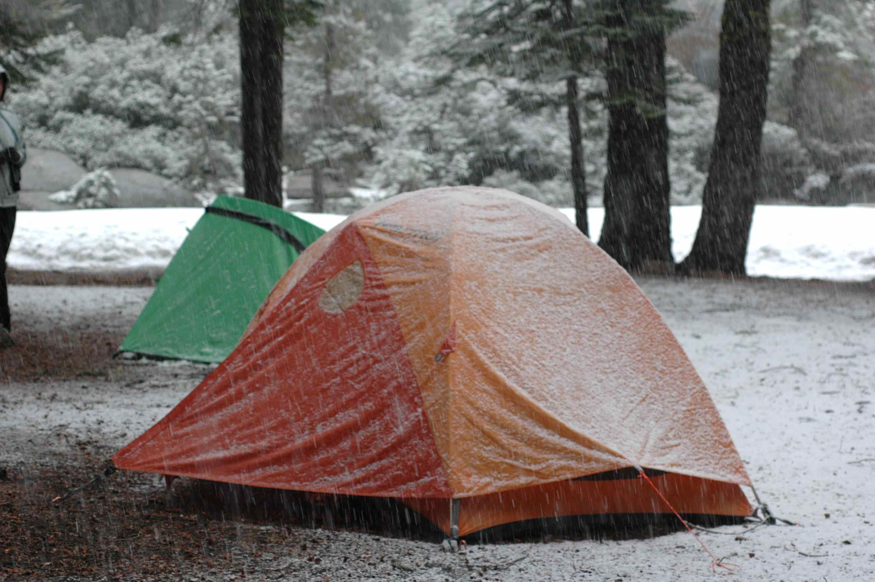 My tent, our first morning in the field.