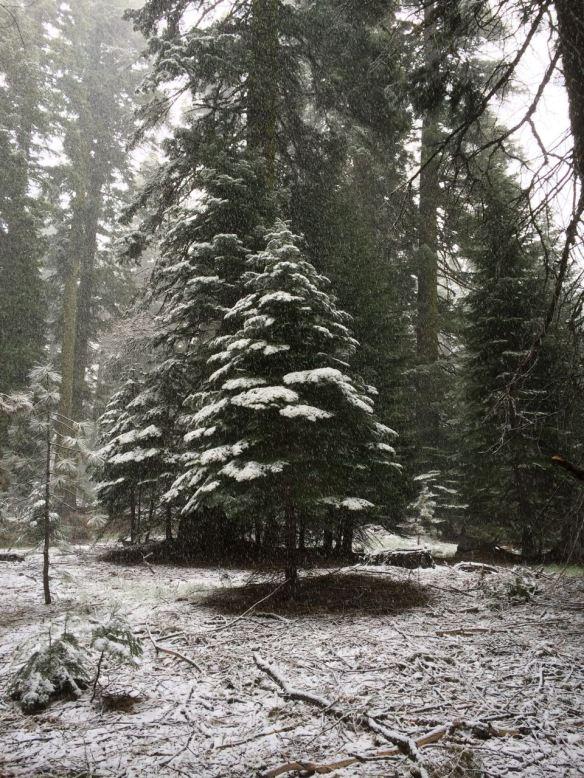 heat_snow7